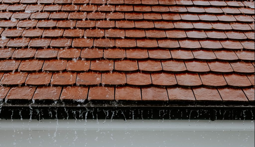 roof is leaking what to do